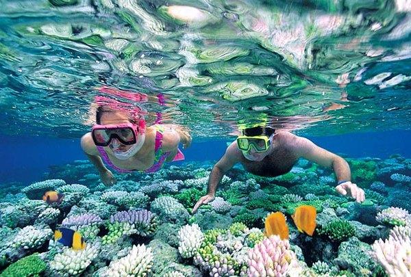 Perbedaan Snorkeling dan Diving
