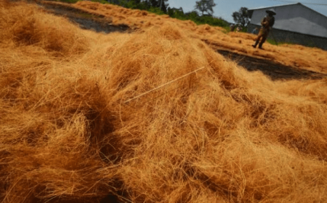 Pemanfaatan Limbah Sabut Kelapa